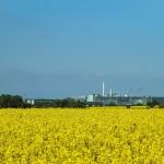 Eilenburg mit Papierindustrie
