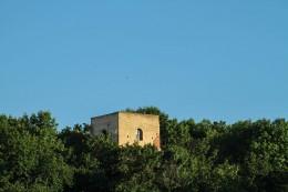 Sorbenturm in Eilenburg von der Schlossaue gesehen